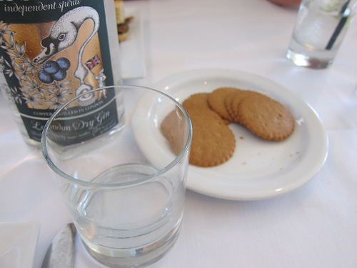 first known gin pairing- ginger and gin